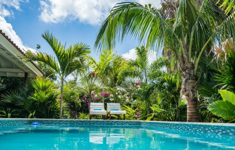 villa-flamingo-zwembad